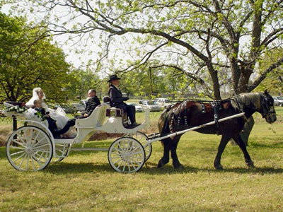 fairy tale wedding theme wedding carriage